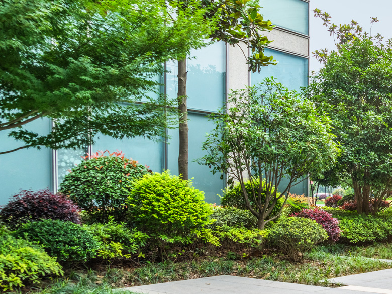 Commercial landscape design and installation image