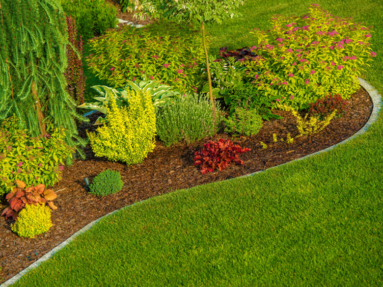 properly maintained landscaping provided by Toby's Lawncare image